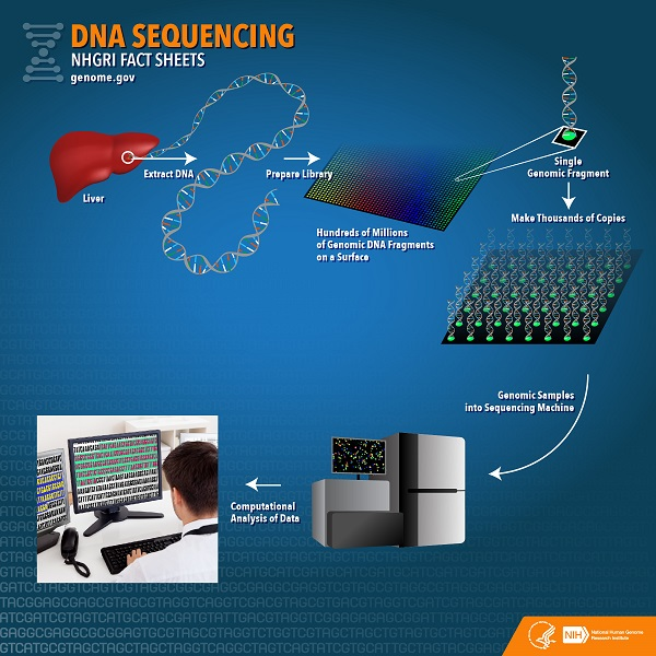 DNA sequencing NHGRI